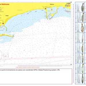 NPS 008 - N 220 -Carta Nautica e Pesca e Sub- seaway-cartografica.it - Retro